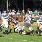 SACS vs Wynberg Rugby