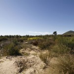 Land handed to Mamre community
