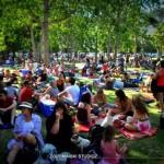 Rudimentals Concert in De Waal Park