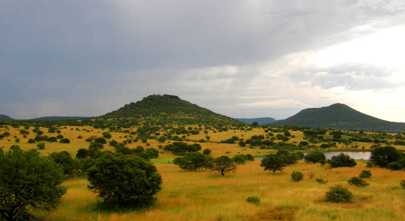 Upland KZN