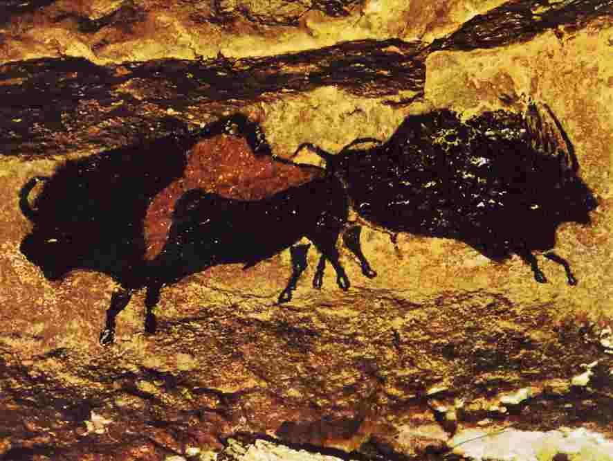 Painting of bisons in the caves at Lascaux