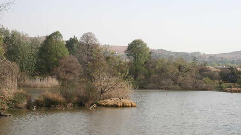 Birders' paradise in Pretoria