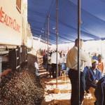 Phelophepa to reach 10000 patients