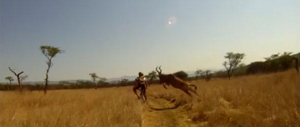 MTB hit by Antelope