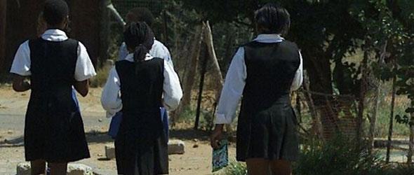 News Schools for Gauteng