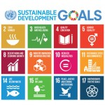 SA gives Sustainable Development thumbs up